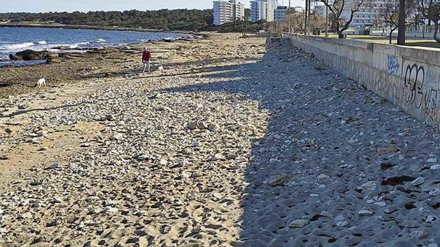 Cala Millor llama a una nueva protesta para lograr regenerar la arena de la playa