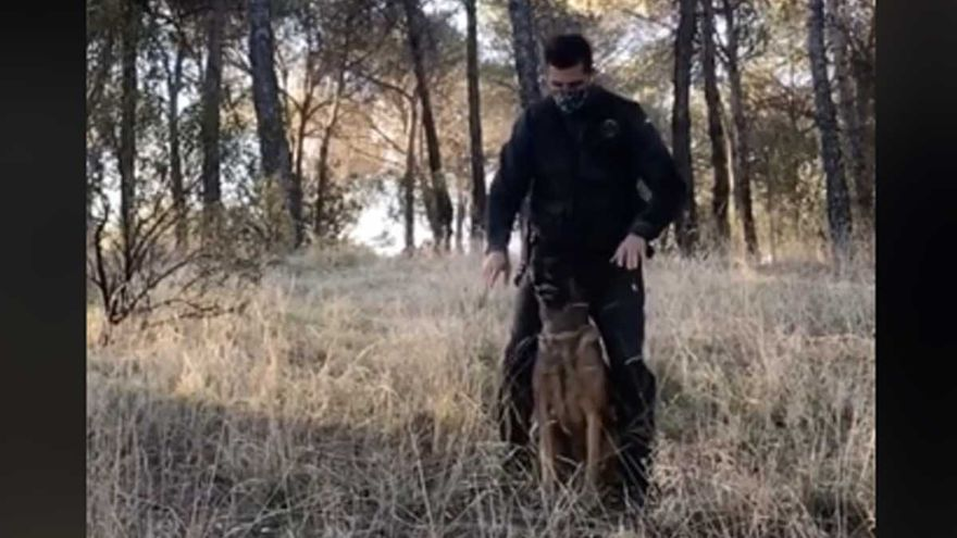 La Guardia Civil se estrena en TikTok bailando con un perro