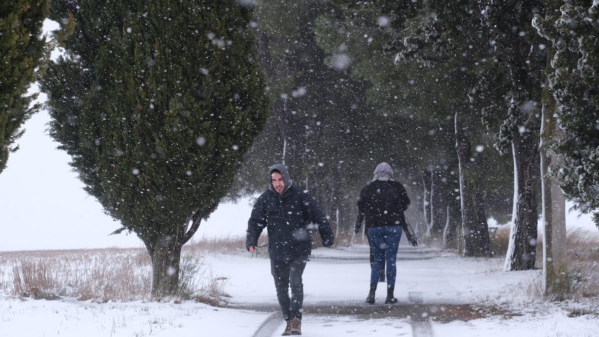 Nieve en La Encina.