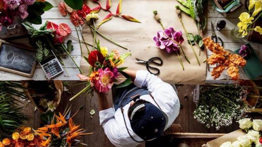 Roba una cafetera y una hucha con 37 euros en una floristería de La Laguna