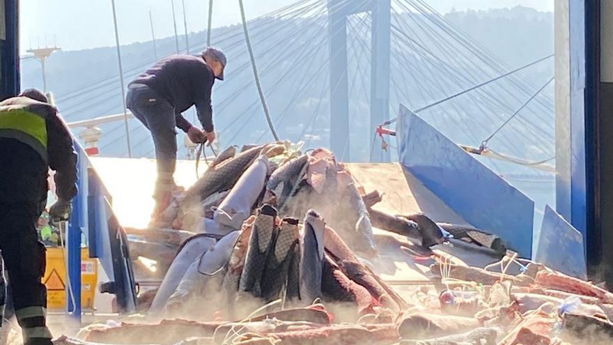 La industria pesquera pagó 20.000 euros al día en planes antiCOVID para sus plantillas