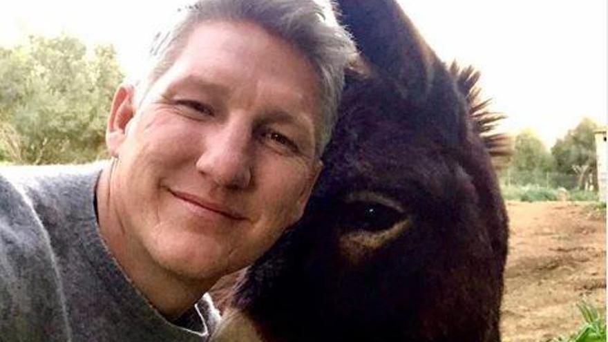 Bastian Schweinsteiger sagt Hallo zum Esel von Til Schweiger