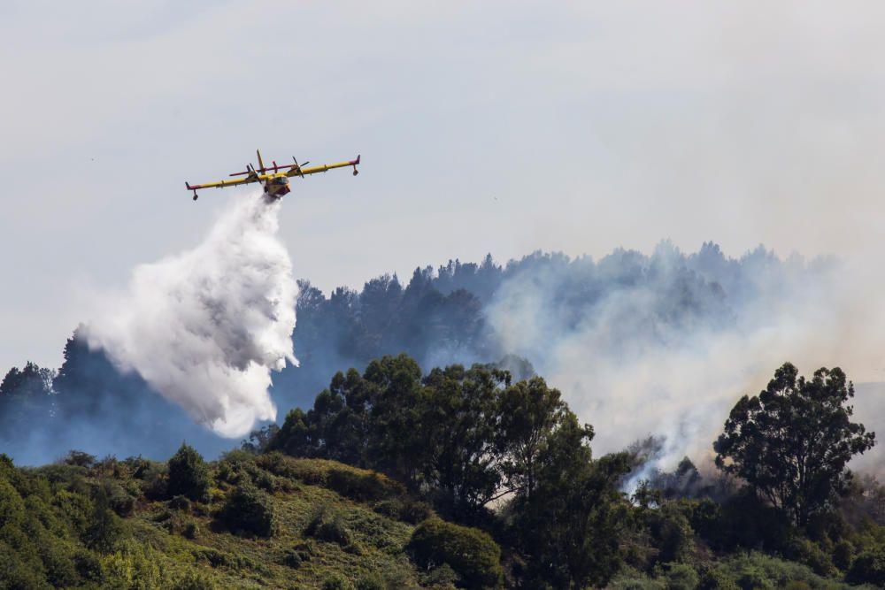 Las imágenes del gran incendio en Gran Canaria