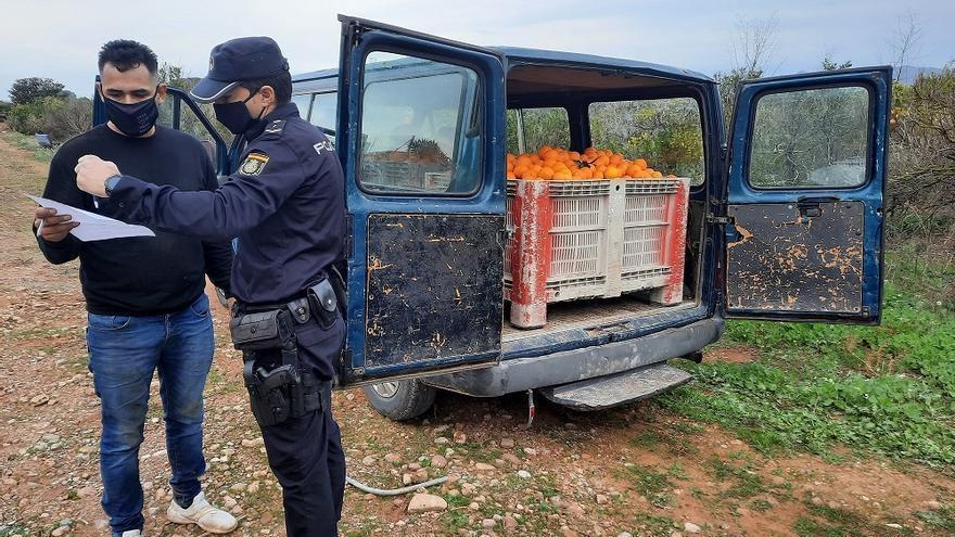 La Policía detiene a 28 personas en 110 inspecciones en el campo