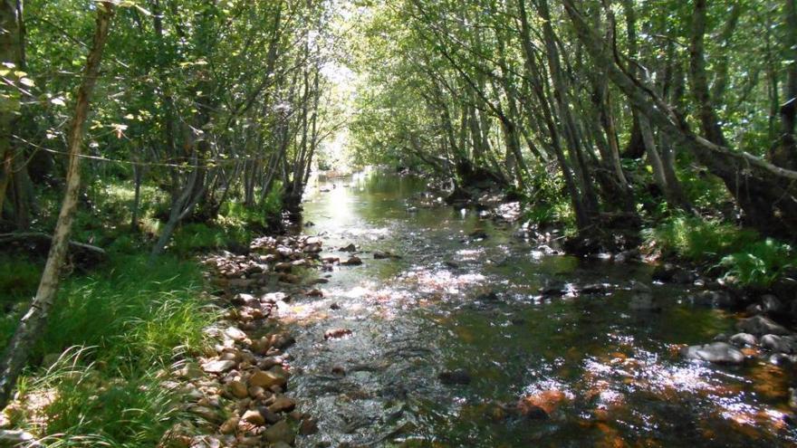 El río Negro incorpora mejoras valoradas en 800.000 euros