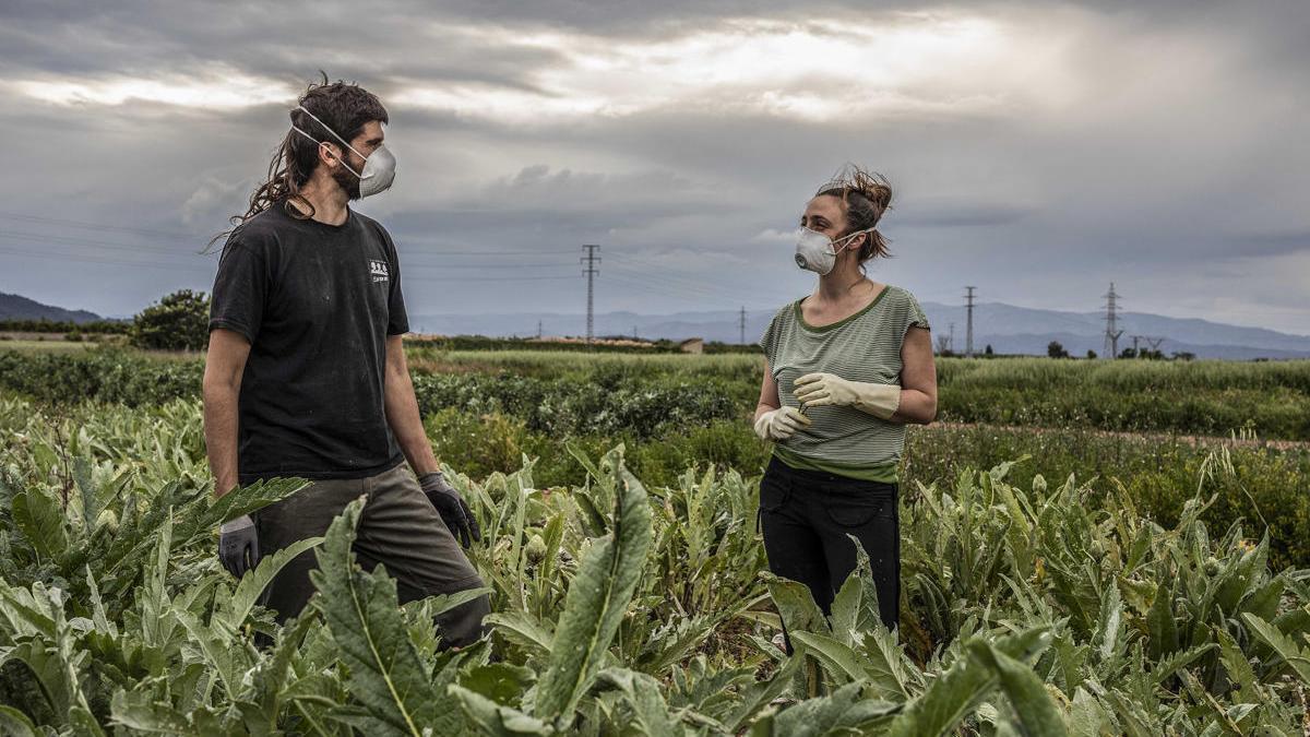 """David, el jefe del proyecto de agricultura ecológica """"Horta y Salut"""", trabaja con Joana en sus tierras."""