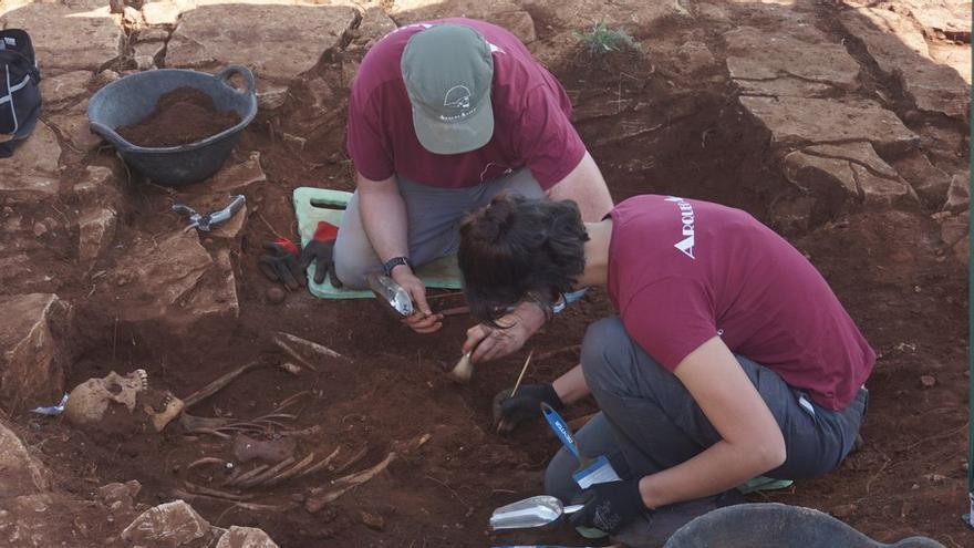 Localizan el primer cuerpo de un soldado republicano en una fosa de Vilafranca
