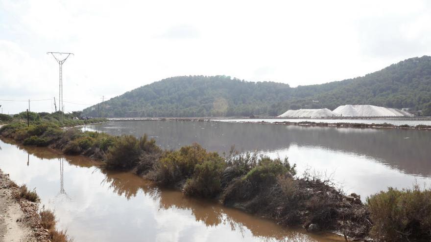 Sant Josep defiende que las infracciones cometidas en el Parque Natural de ses Salines de Ibiza no prescriben