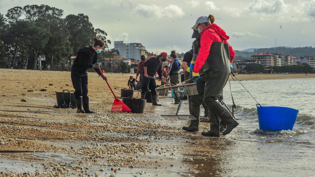 Mariscadoras trabajando en el litoral gallego.