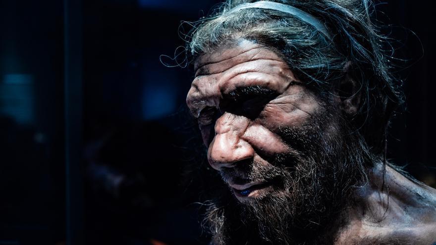 Investigadores españoles hallan la evidencia de que los neandertales hablaban