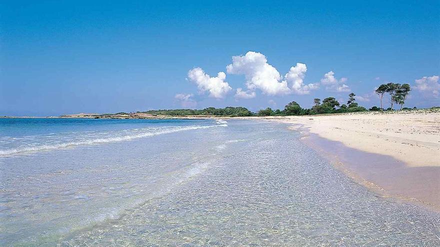 Bußgeld in Höhe von 7.500 Euro für illegale Strandparty auf Mallorca