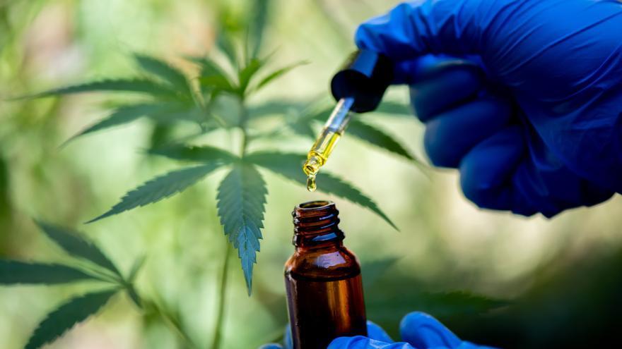 Andorra estudiarà les oportunitats de cultivar-hi cànnabis per a usos medicinals