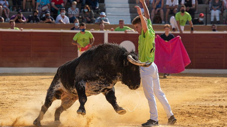 Histórico: 1.250 entradas vendidas en 24 horas para los recortes con toros de Victorino en Castellón