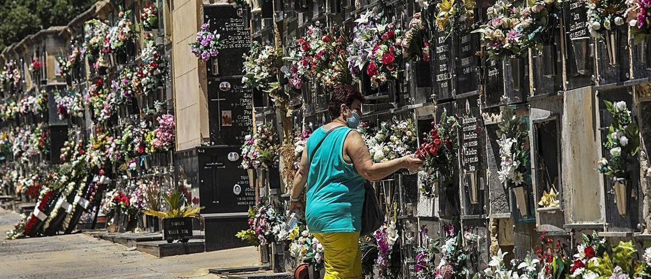 Una persona con mascarilla en el cementerio viejo de Elche, a finales del pasado mes de mayo.