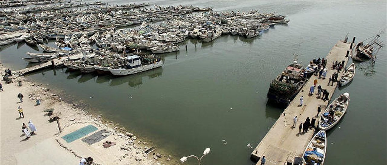 La Luz ultima la llegada de 2.000 toneladas de pesca fresca mauritana