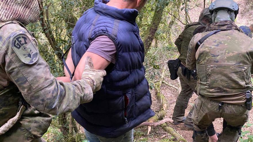 Quatre detinguts i 7.800 plantes de marihuana comissades en una plantació a Susqueda
