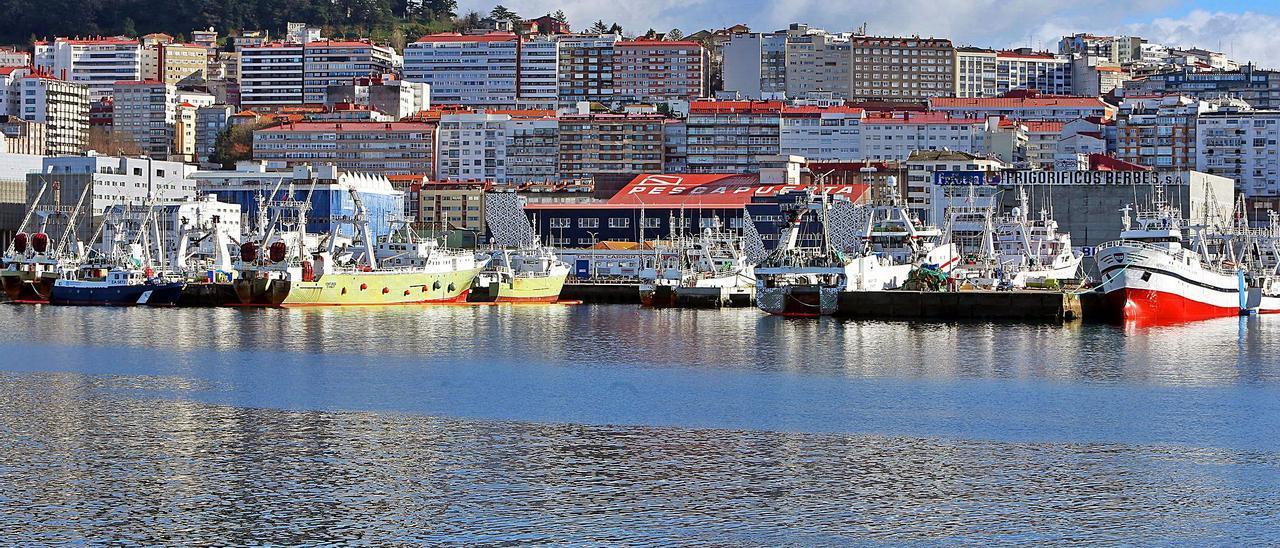 La flota de Malvinas amarrada en el puerto de Vigo. |   // MARTA G. BREA