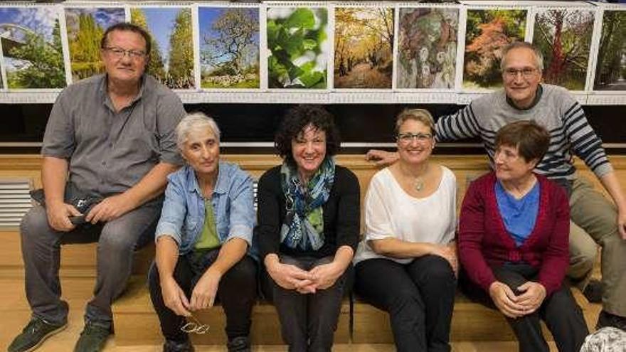 La SGHN pide mayor atención a los árboles de la ciudad