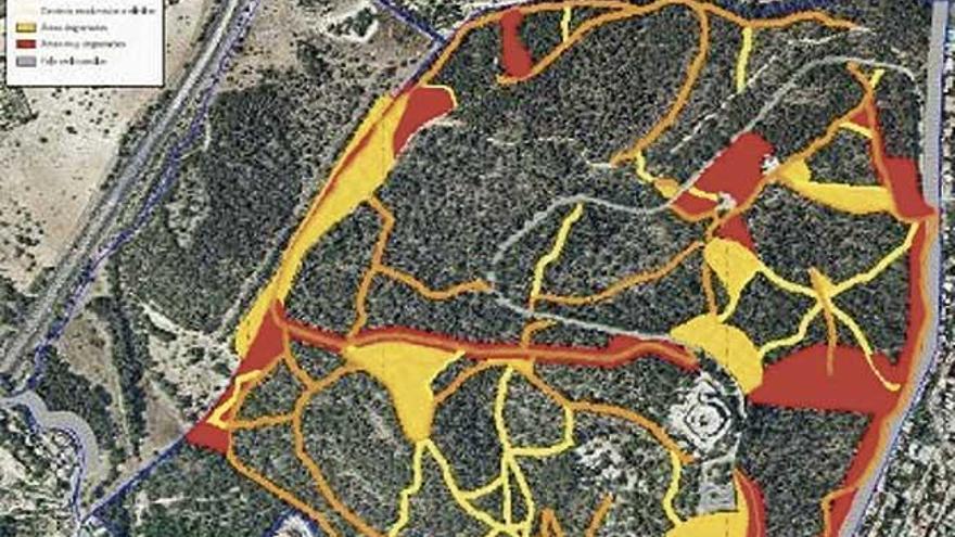 Wege im Bellver-Wald sollen auf 4,2 Kilometer beschränkt werden