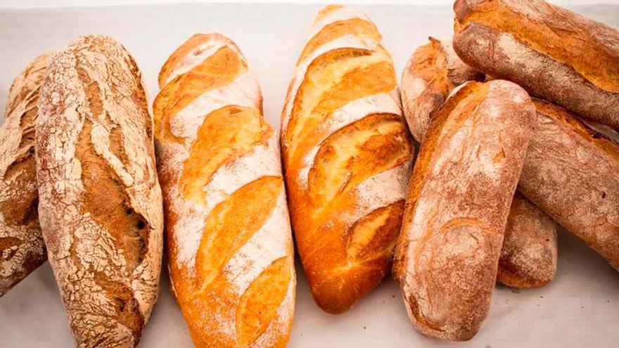 Cómo bajar peso sin dejar de lado el pan: este es el que recomiendan comer diario para perder peso