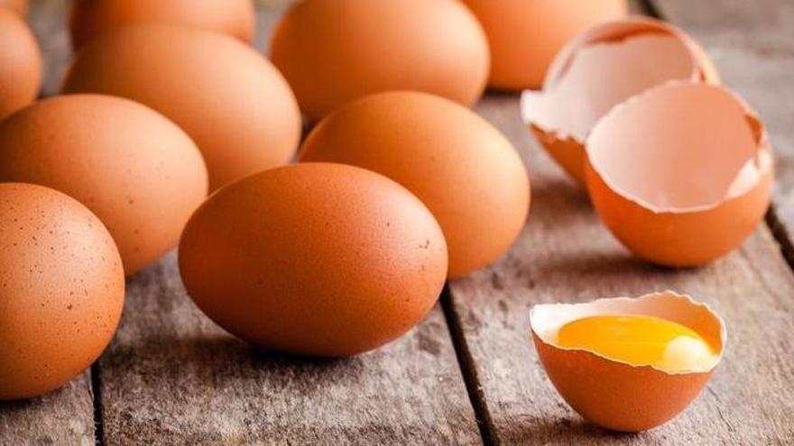 Mallorca will Eier aus Käfighaltung aus Kantinen verbannen
