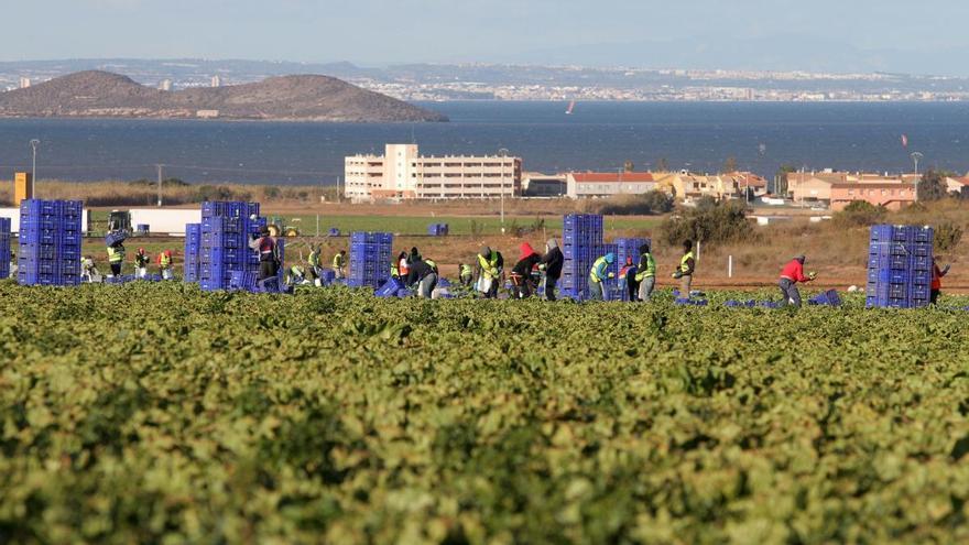 Una agricultura más 'verde' e innovadora para responder a las necesidades alimentarias