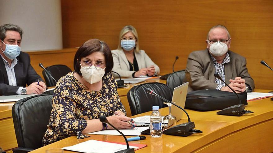 El PSPV frena a sus socios que reclamaban modificar la ley de Amnistía de 1977