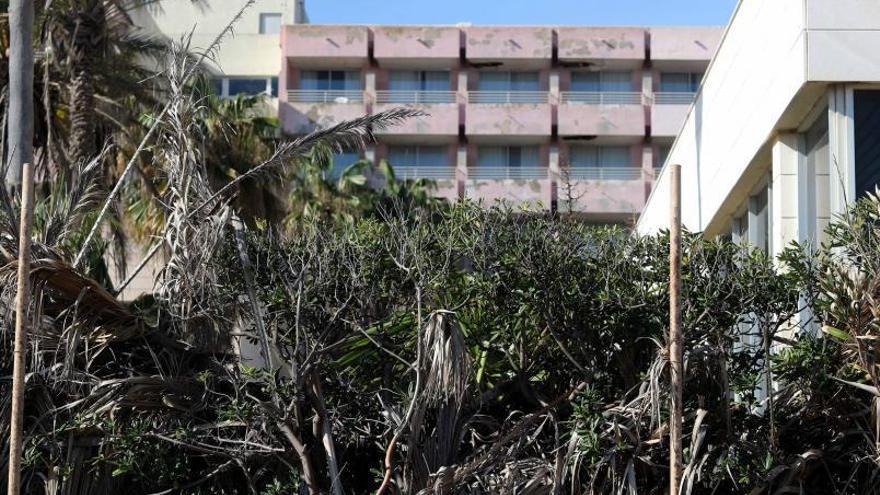 El PP censura a Ribó que haya rechazado reformar el Sidi Saler