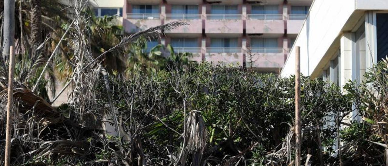 El Hotel Sidi Saler ha sido abandonado.  | J.M.LÓPEZ