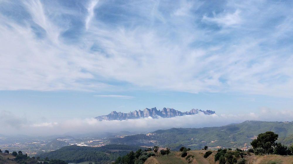 Montserrat entre cotons
