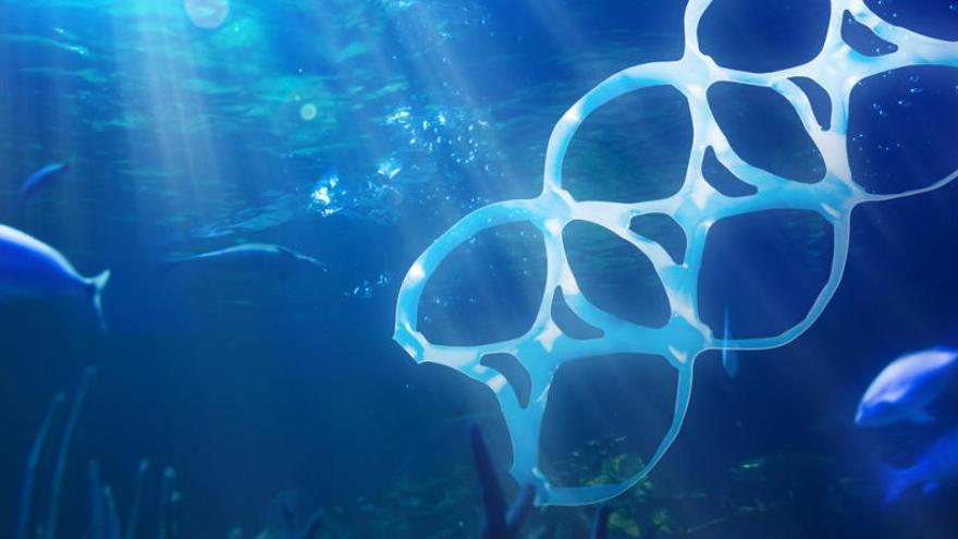 La contaminación humana llega a las fosas oceánicas más profundas