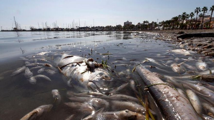 El colapso del Mar Menor