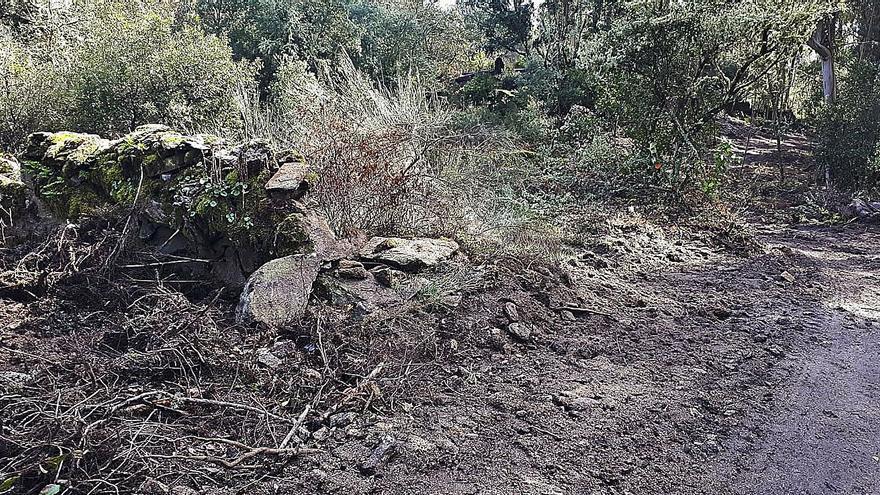 Los muros y el bosque de Santa Comba de Naves, del s. IX, dañados al abrirse una pista