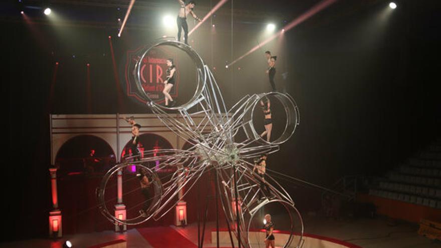 Alguns dels espectacles que es podran veure en la desena edició del Festival Internacional del Circ Elefant d'Or de Girona