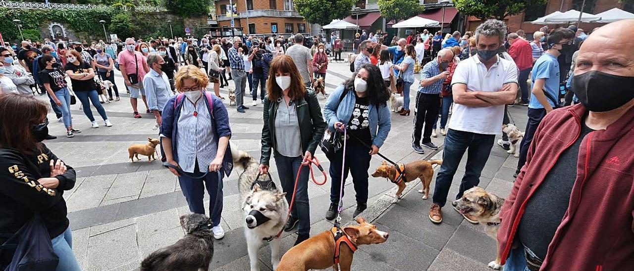 La protesta por la ordenanza de mascotas del pasado domingo en Mieres.