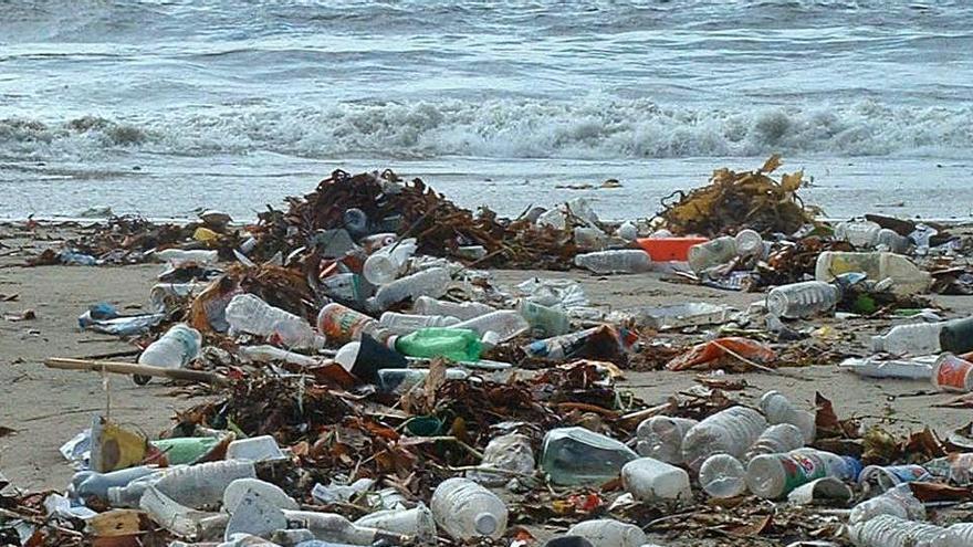 Com viure en un món sense plàstic?