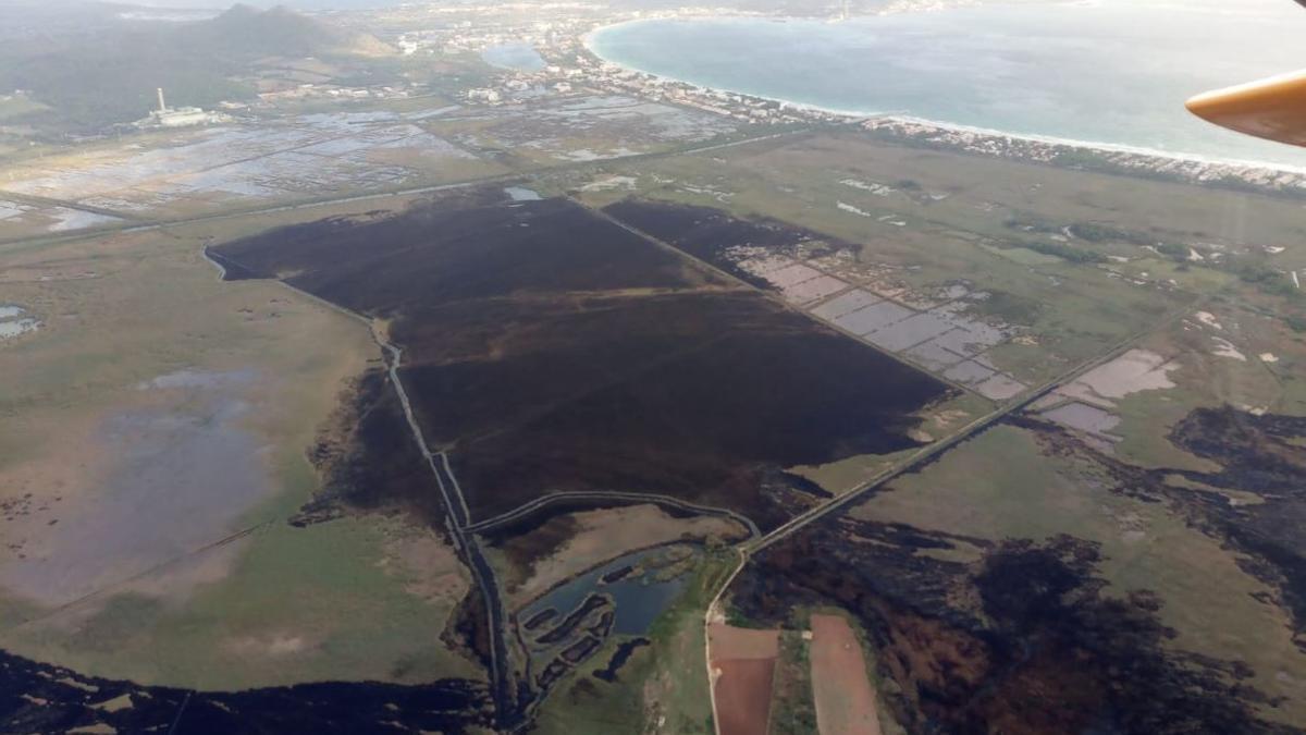 Zona afectada por el incendio en s'Albufera