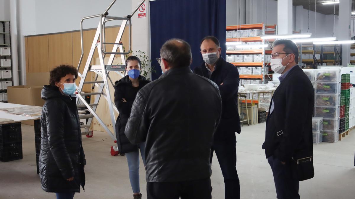 El equipo de gobierno de Onda recupera el Museo del Azulejo como sede para PROALSO.