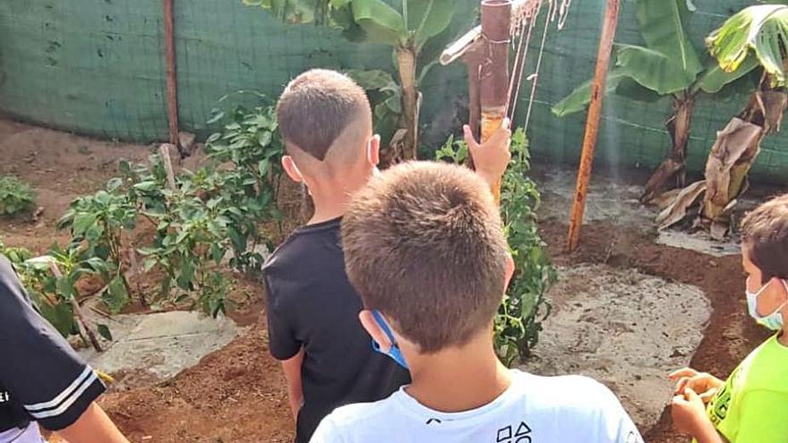 Los niños de Proinfancia visitan el huerto de Las Remudas