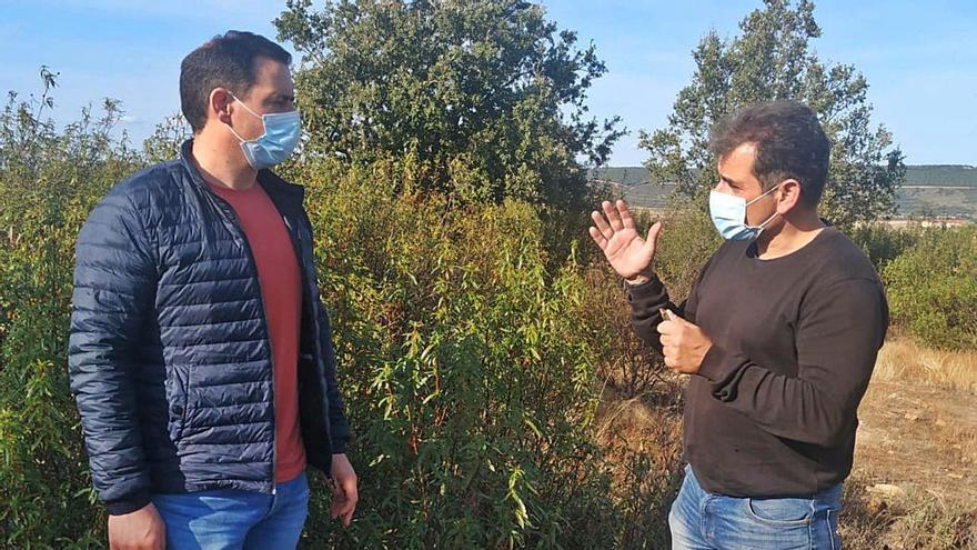 El alcalde de Tábara, a la izquierda, junto a un experto en una zona de aprovechamiento micológico.