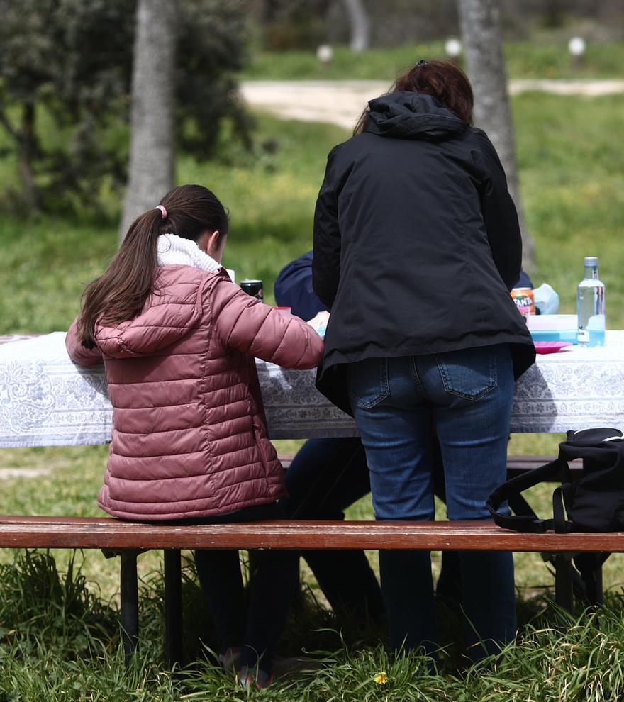 La pandemia pone de moda los picnics