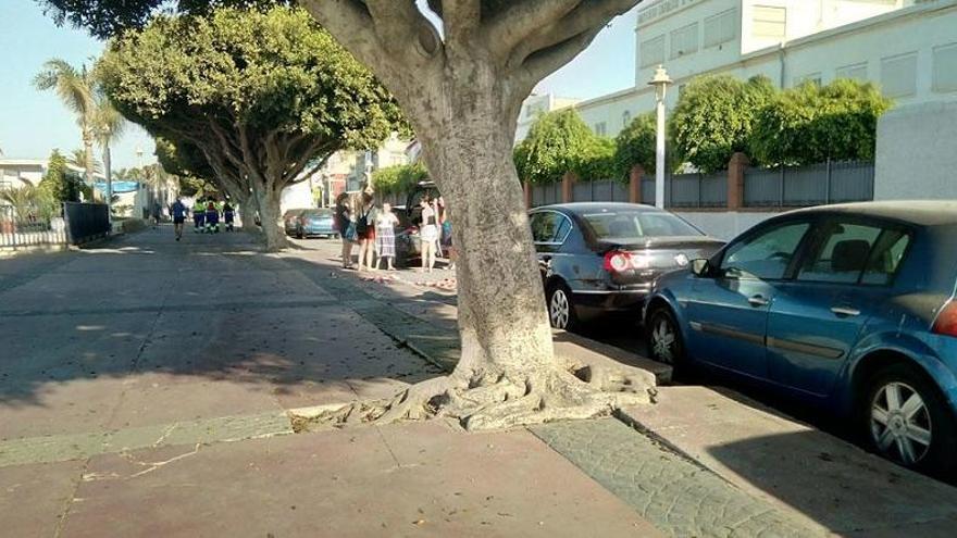 Vecinos reclaman el arreglo del paseo marítimo del Palo