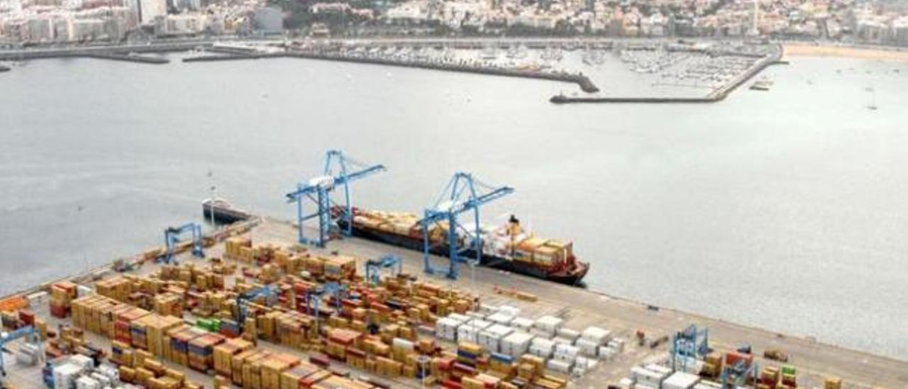El Cabildo respalda el depósito de  gas que pretende instalar el Puerto