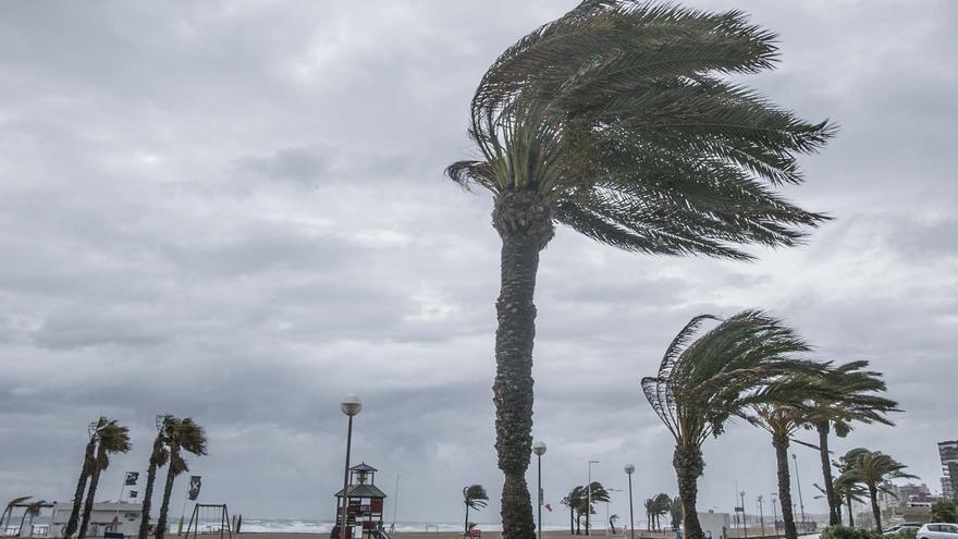 El tiempo en Alicante: viento fresco y temporal marítimo