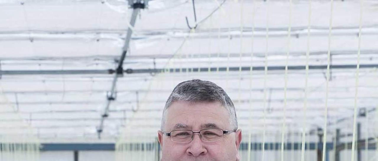 Juan José Ferreira, en los invernaderos del Serida.