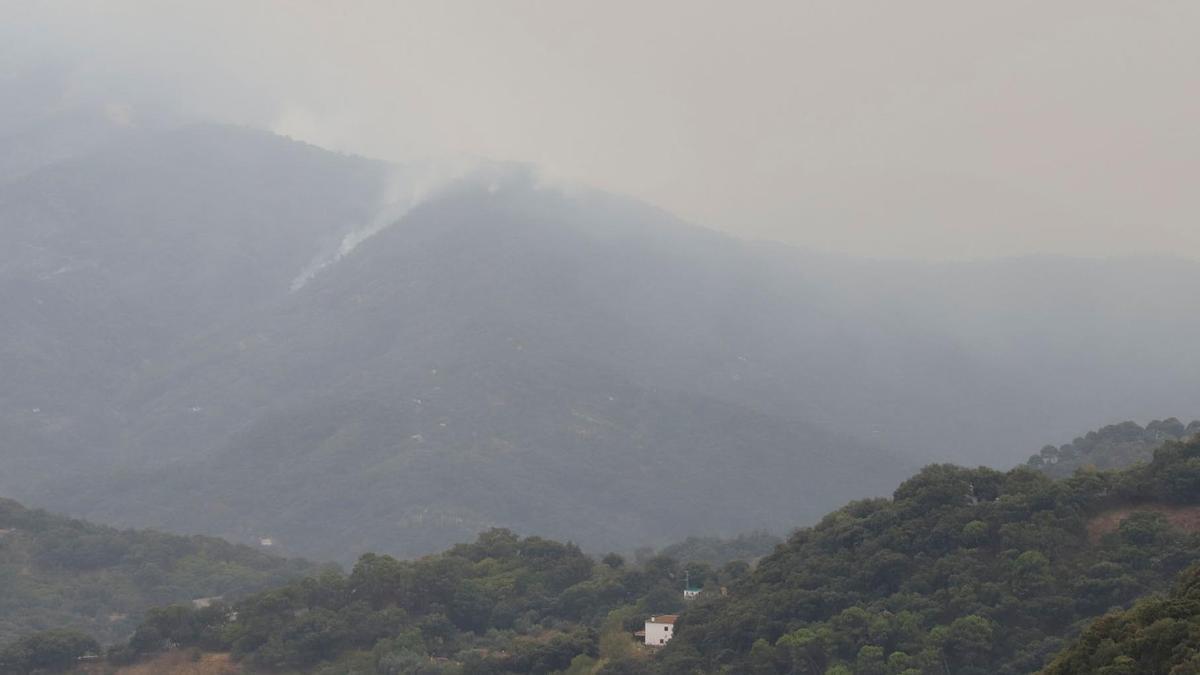 El incendio, visto desde Jubrique este lunes.