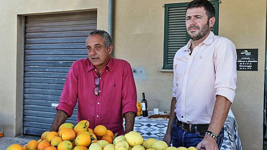 Alianza comercial para impulsar la venta de naranjas de Sóller