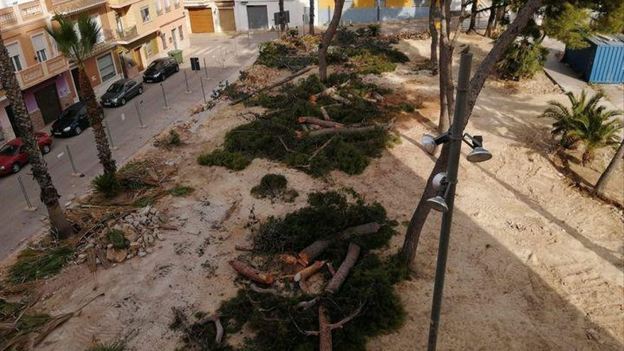 Indignación en Picassent por la tala de los pinos del parque junto a la Ermita