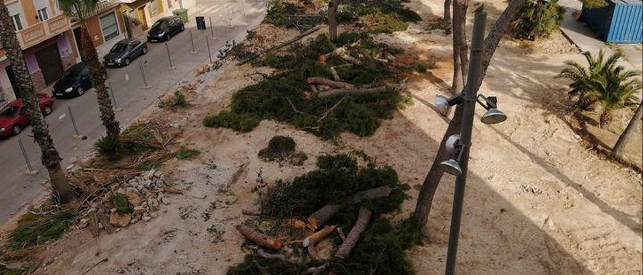 Apenas un par de palmeras han quedado en pie en el parque junto a la Ermita de Picassent.   P.I.