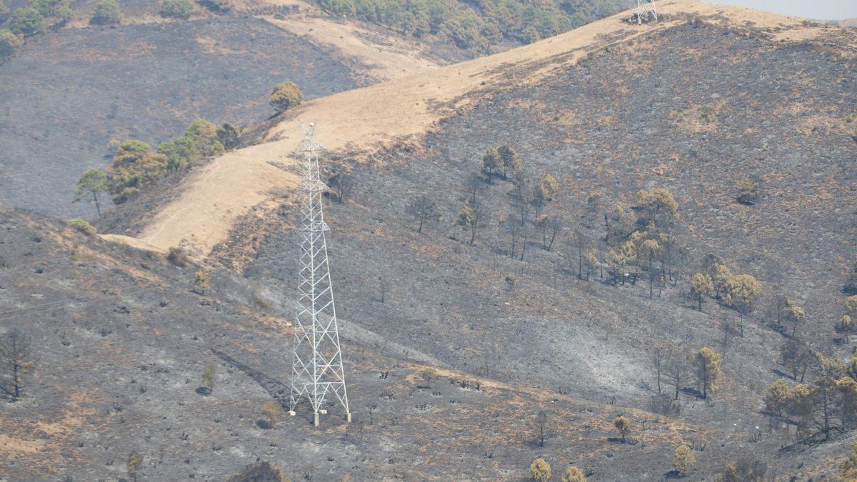 incendio-malaga10.jpg